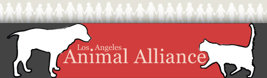 GRS Tech is a proud supporter of The Los Angeles Animal Alliance